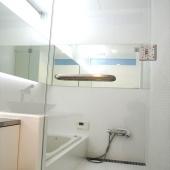 newhouse_sanitary018_1000