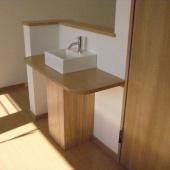 newhouse_sanitary036_1000